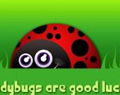 Cartoon Ladybug by Ellie of Inspiring Art